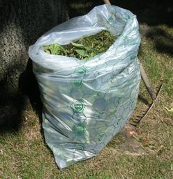 Bags in industrial composting